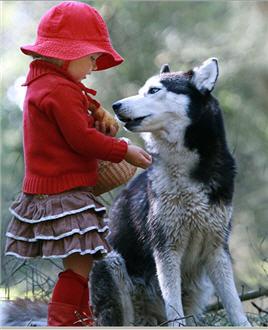 littlegirl-wolf